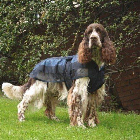 Royal Canin Boxer 26 adulto 12 kg