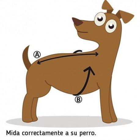 Royal Canin Gato Sabor Exigente