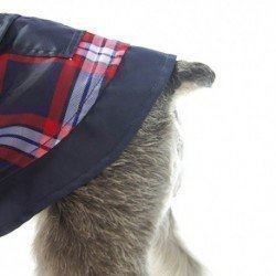 Royal Canin Vet Gatos Senior Consult Stage 2
