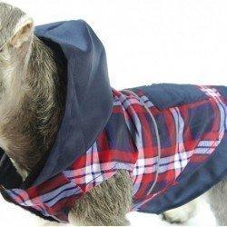 Royal Canin Vet Gatos Senior Consult Stage 1