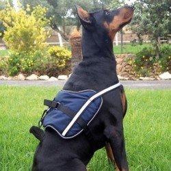 Royal Canin Diet Feline Fibre Response FR31 4kg