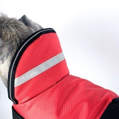 Collar antiparásitos para perros grandes Virbac Preventef