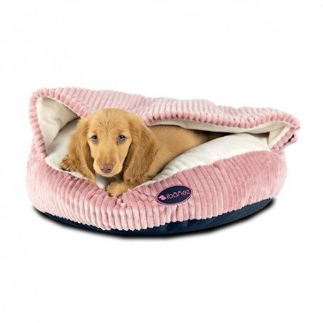 Royal Canin Diet Renal Especial para Perros 10 kg