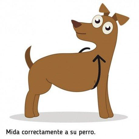 Nutro Limit Ingredient perro adulto mediano con cordero