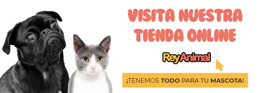 Visita nuestras tienda online para mascotas