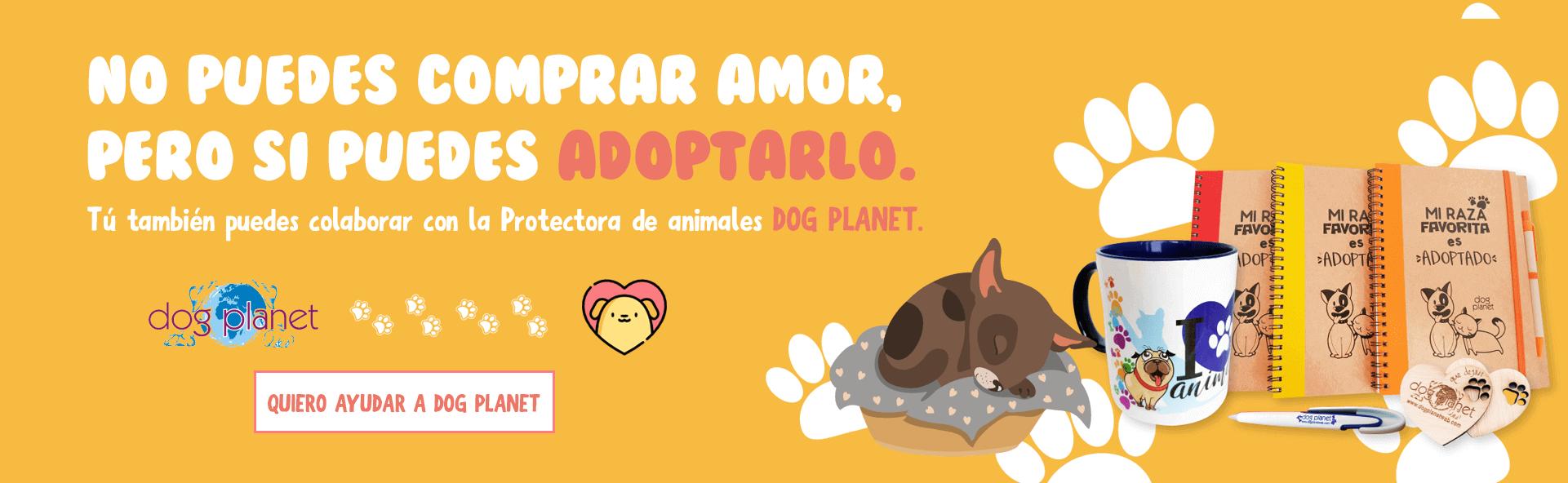Colabora con Dog Planet | Tienda de animales online