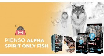Pienso Alpha Spirit Alimento Only Fish para perros